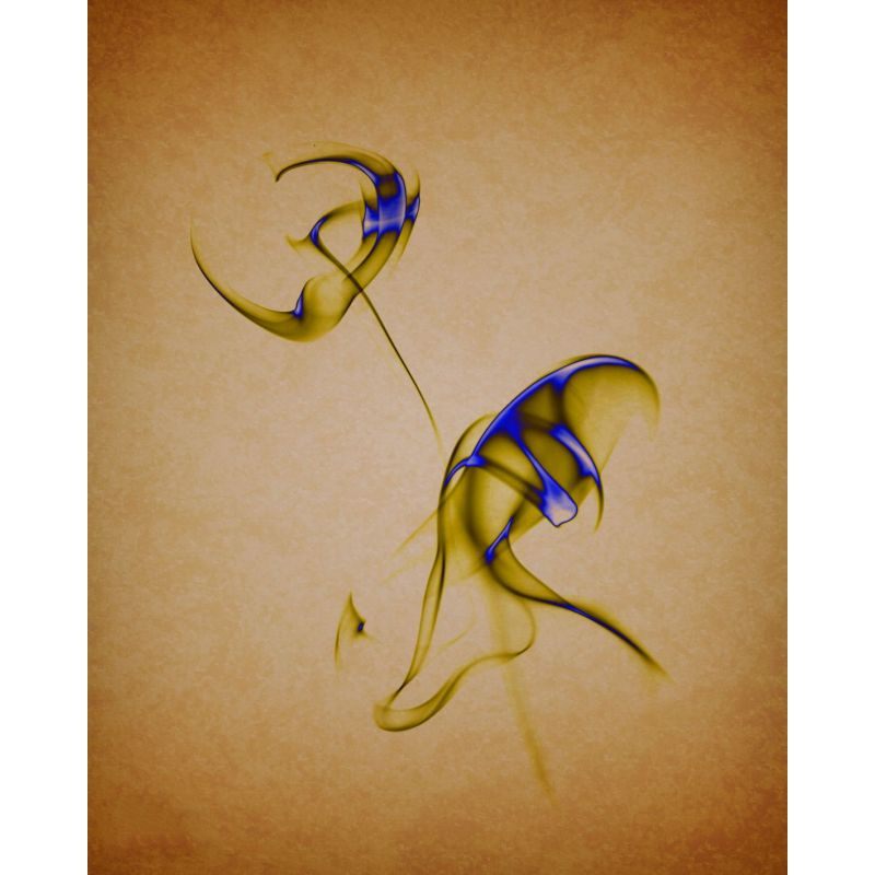Photographie d'art par Nathalie Teulé vendue par New Concept Art Photo Selling