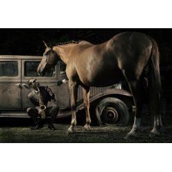 Photographie d'art par Virginie Georges vendue sur new concept art photo selling