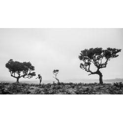 Photographie de landscape-nude par Sebastien Roignant vendue sur new concept art photo selling